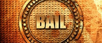 bail bonds career
